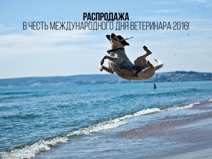 Международный день ветеринара 2016!